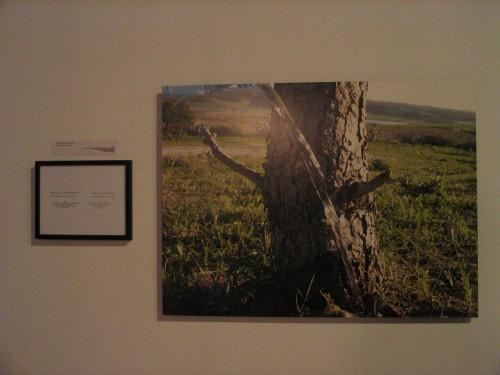 """אמילי ג'אסיר, מתוך """"אם אוכל לעשות משהו למענך בפלסטין..."""", איסטנבול, 2003"""